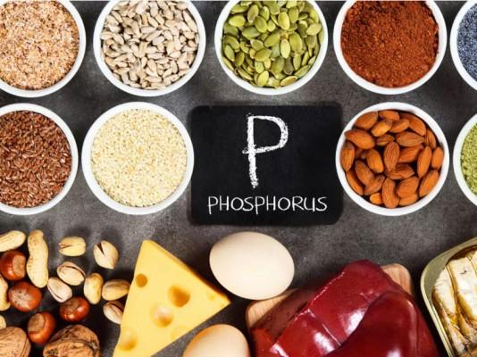 منابع سرشار از فسفر در مواد غذایی