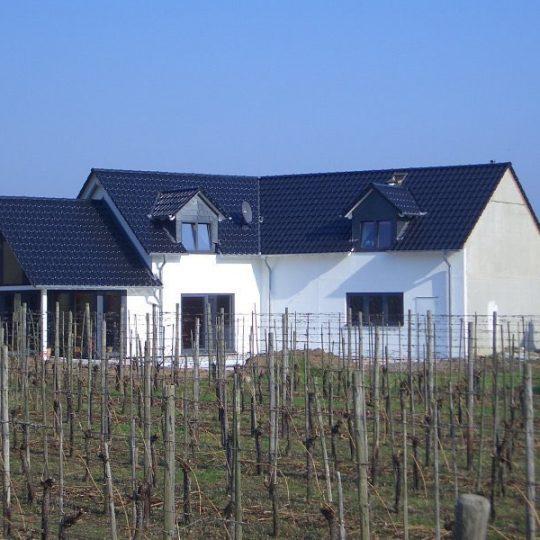 Haus mit Pool in Winningen - Außenansicht 2