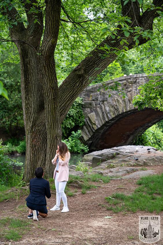 Photo 2 Same Sex Proposal in Central Parks   VladLeto