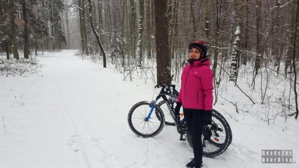 Rowery zimą