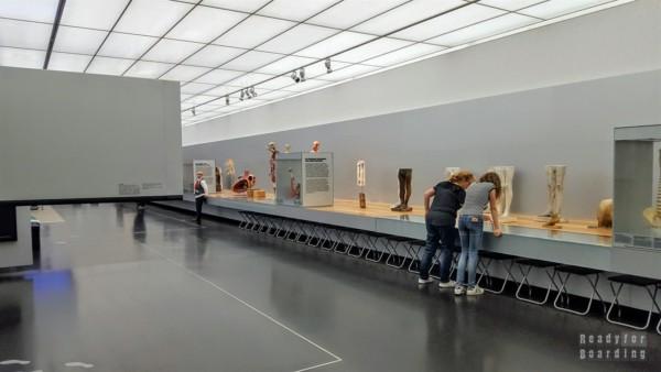 Muzeum Higieny w Dreźnie - Niemcy