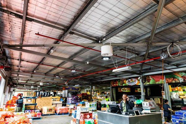 Airius-Cooling-Fans-Installation-at-Dandenong-Markets-20