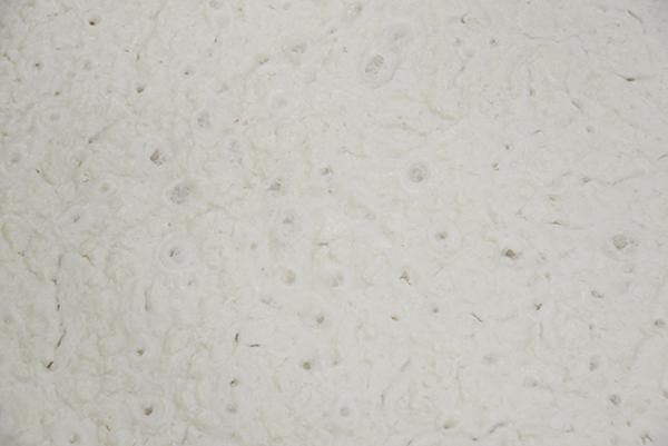 麹が米の糖分を溶かし盛んに炭酸ガスを出している。
