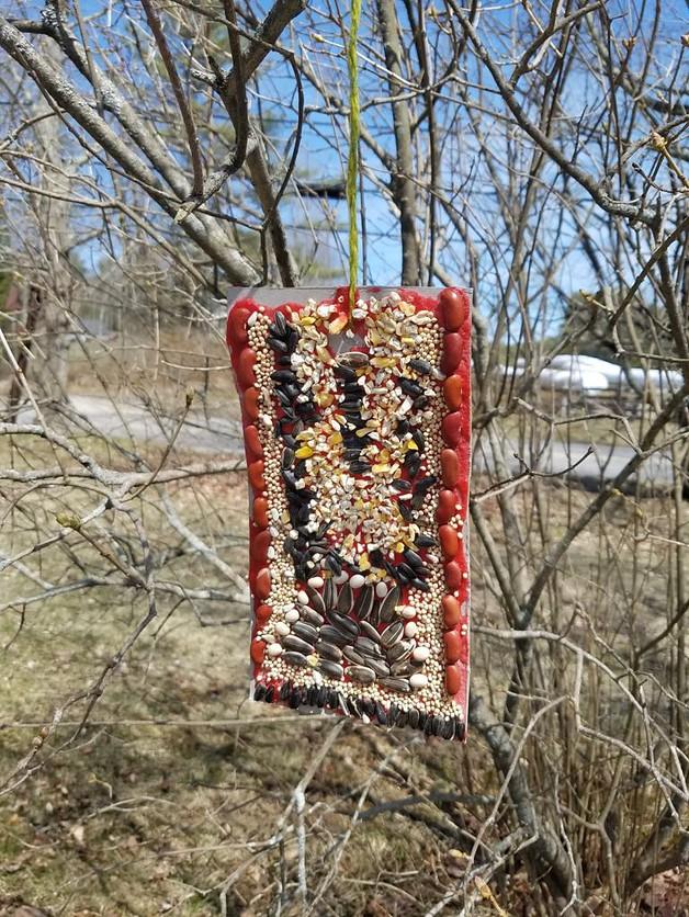 DIY Seed Mosaic Bird Feeders WinterKids1