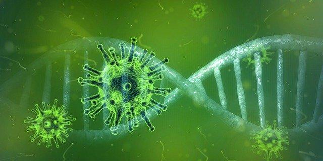 Cynoteck's preparedness and guidance during COVID-19 (Coronavirus) outbreak
