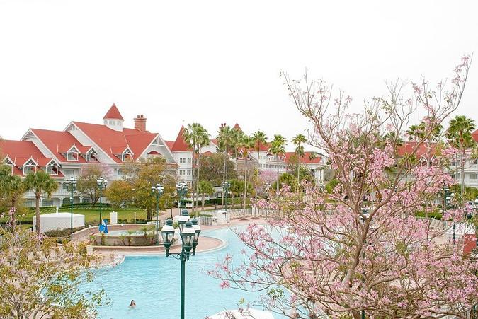Food Blog Forum 2015-Walt Disney World