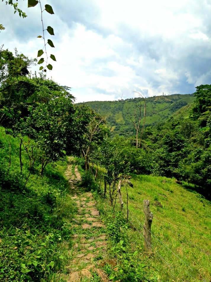 Hiking to Juan Curi waterfall