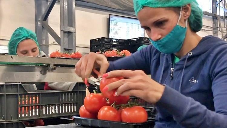 Mezőgazdaság, logisztikai beruházás