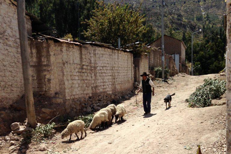 Tarata, Perú