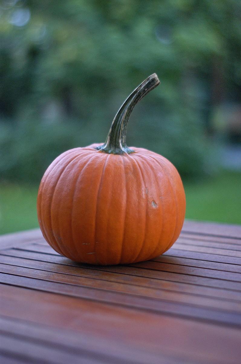 Photo of an Orange Pumpkin on Wooden Table