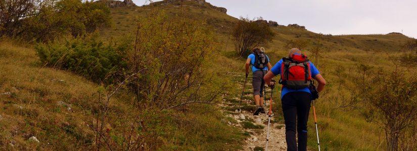 Wandelen: Het mentale en fysieke nut van een (lange) wandeling.