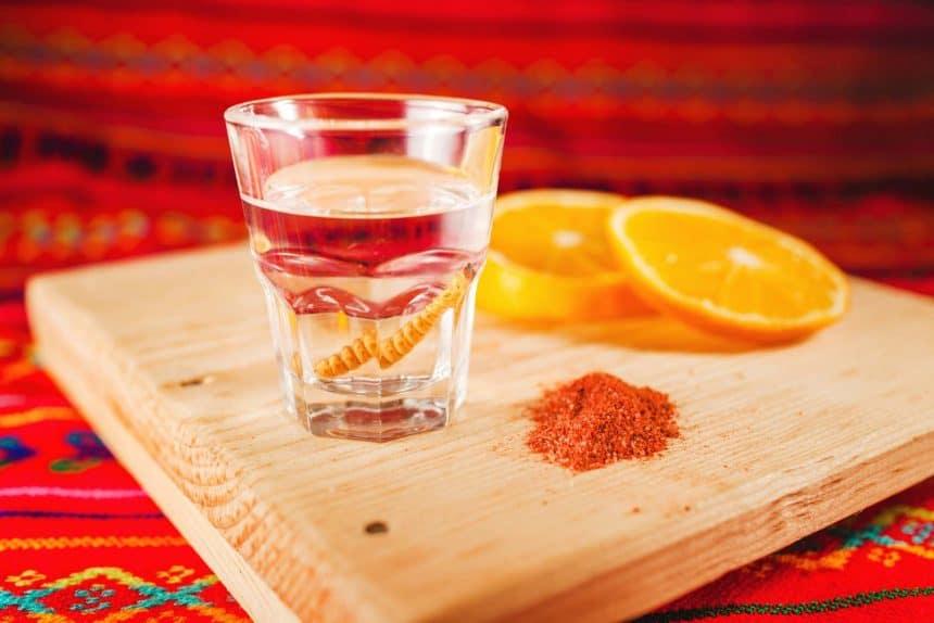 Bebidas mexicanas - Un trago de mezcal con su gusano