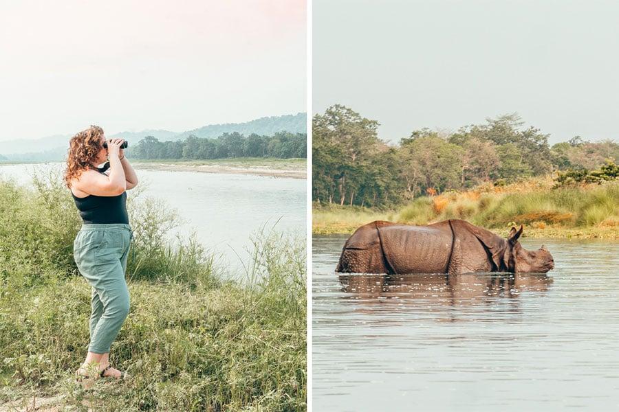 Girl sightseeing in Chitwan National Park and swimming Rhino.