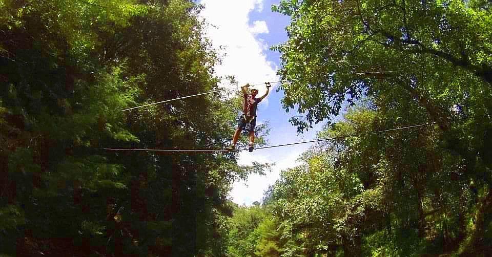 Canopy La Taltuza Loca