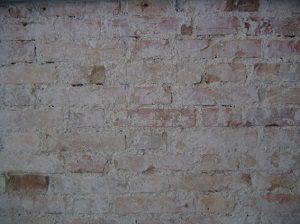 Kellertrennwände bei Tipp zum Bau