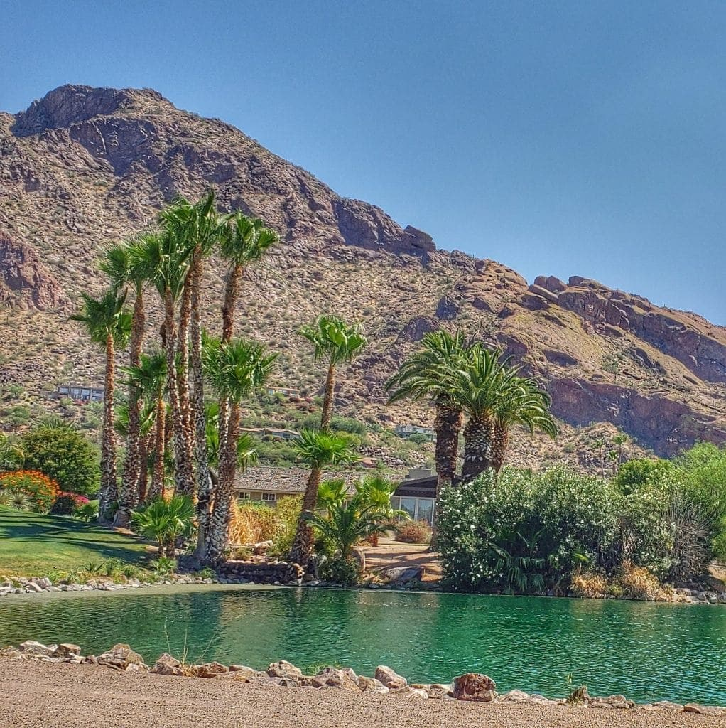 Lagoon with palm trees and Camelback Mountain rising above make Mountain Shadows Paradise Valley an oasis in the desert