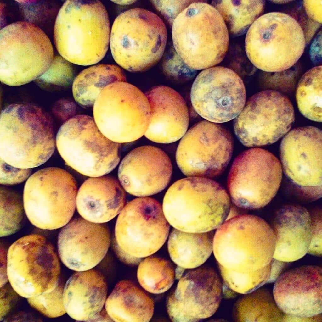 lapsi fruits