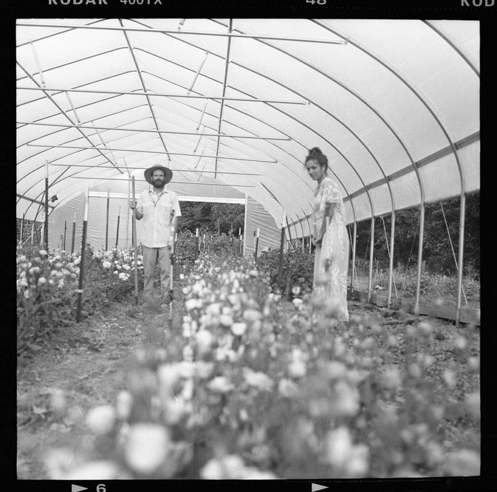 120 film black and white photo of bellaire blooms flower farm greenhosue