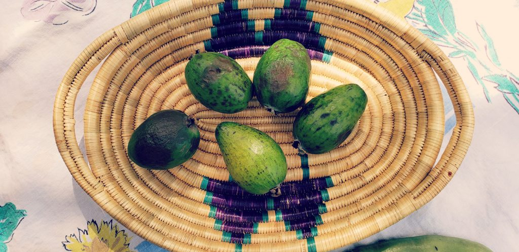 five feijoa fruit sit in a basket from Tanzania
