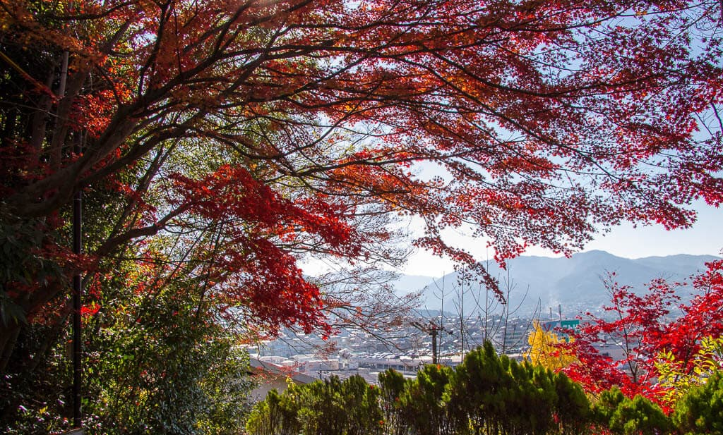 Autumn colours on the Nakasendo Walk