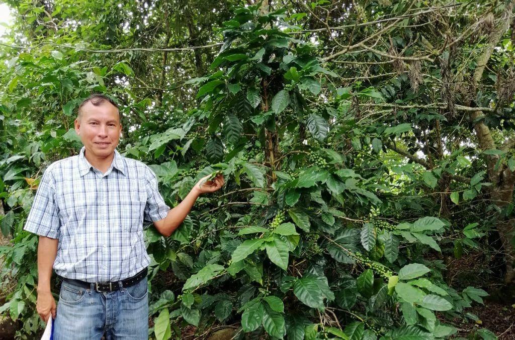 Don Mario Morales en su plantación Café Montaña de Guastatoya