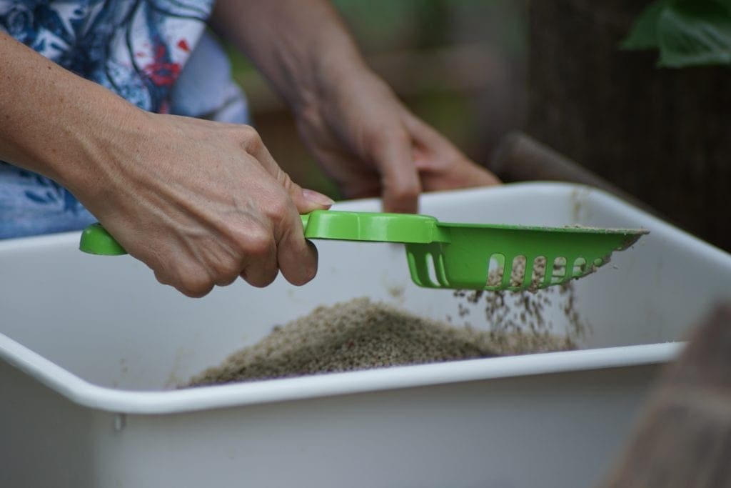 Image of someone scooping a litter box to maintain good odor control