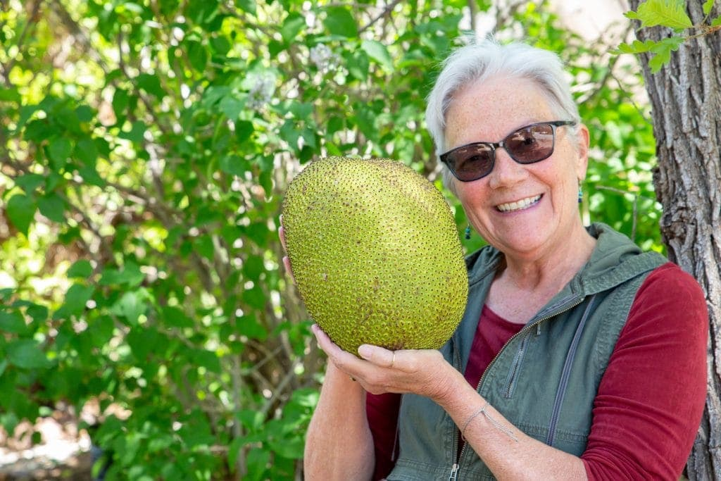 Author holds Jackfruit up near her face showing how large this oval shaped fruit really is 1.5x the size of her head