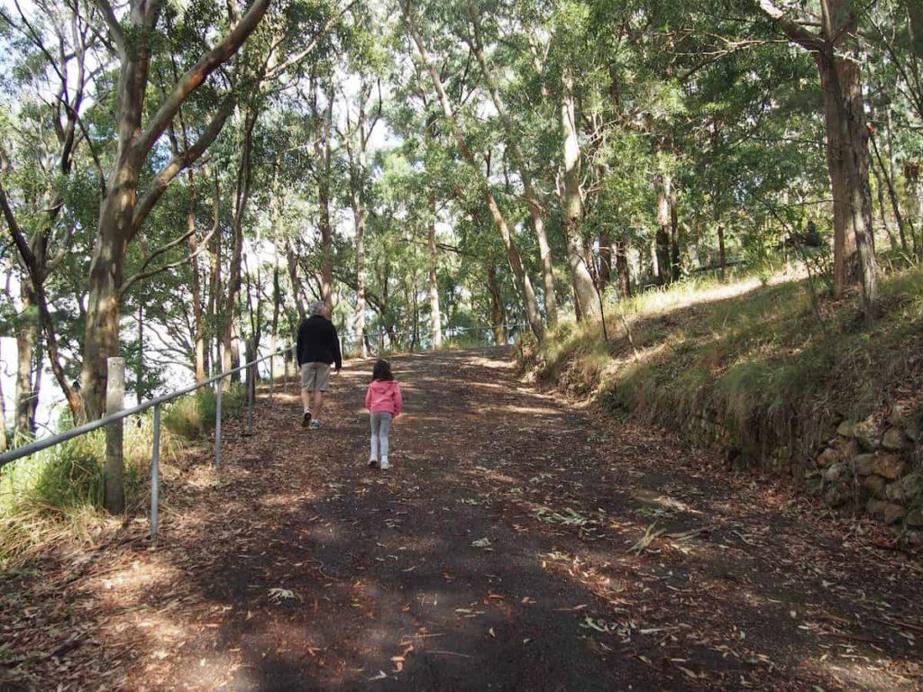 Mount Sugarloaf bush walk