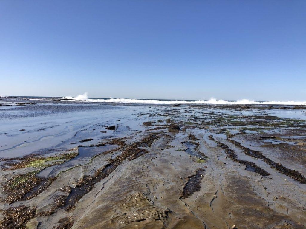 Burwood Beach Merewether