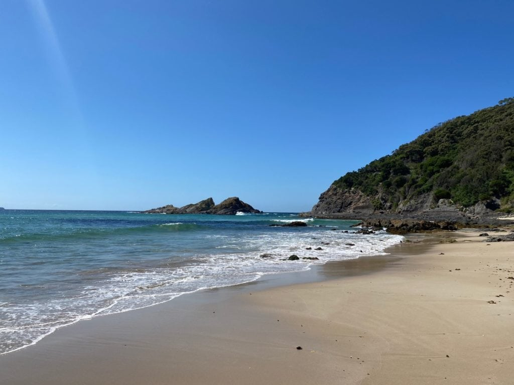Boat Beach Seal Rocks