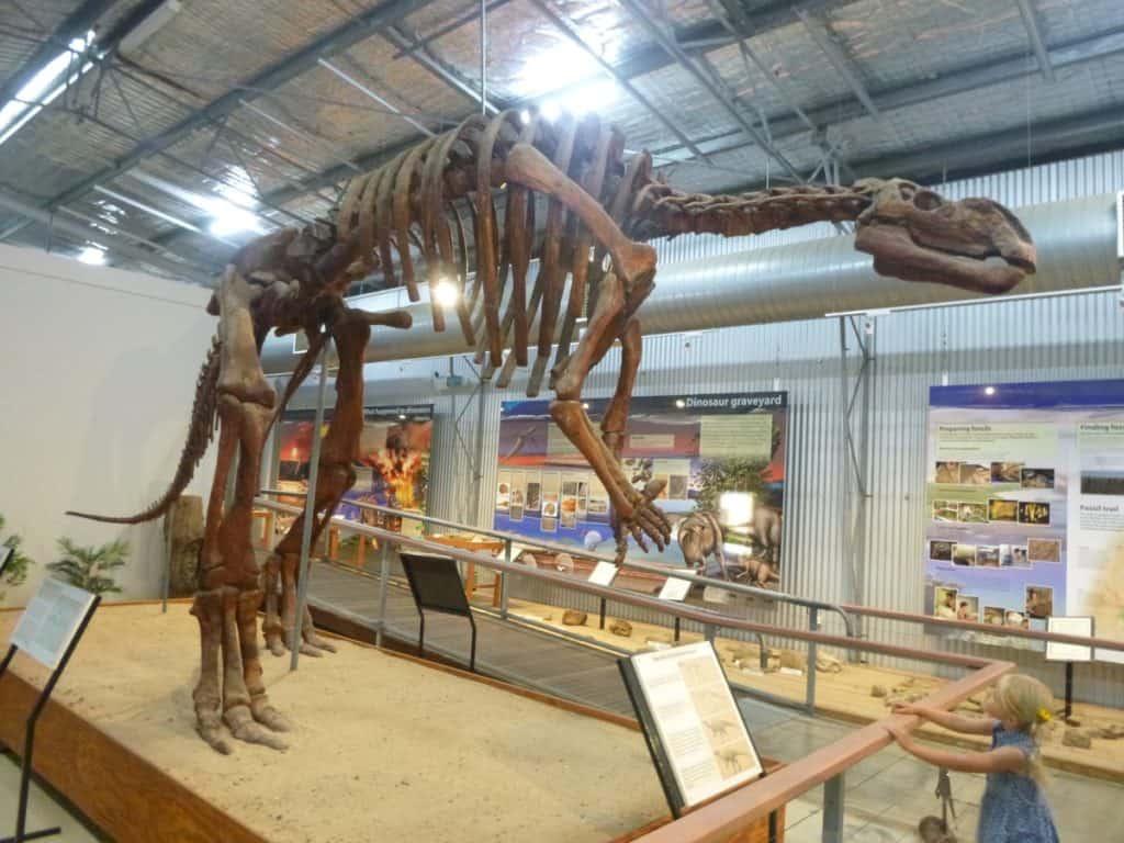 Flinders Discovery dinosaur queensland