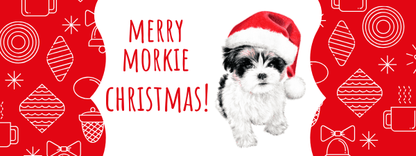 Holiday safety tips for your Morkie