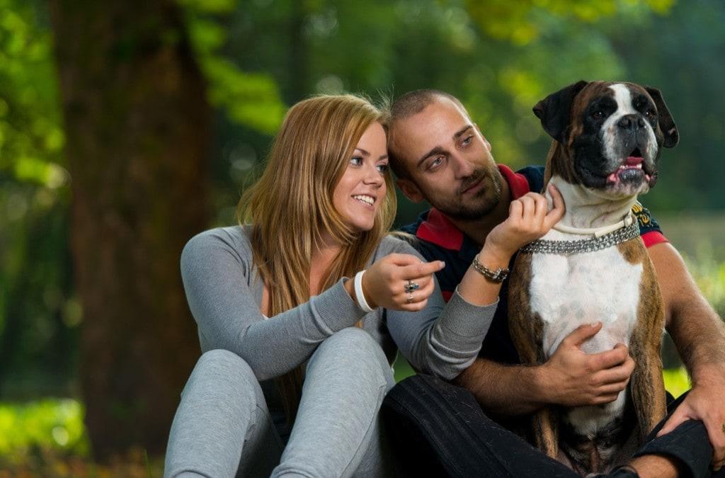 Local Vets| Optional Pet Insurance