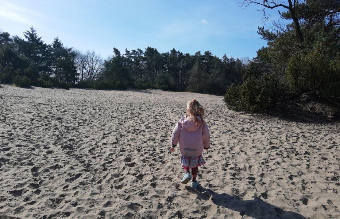 Zandbergen Losser