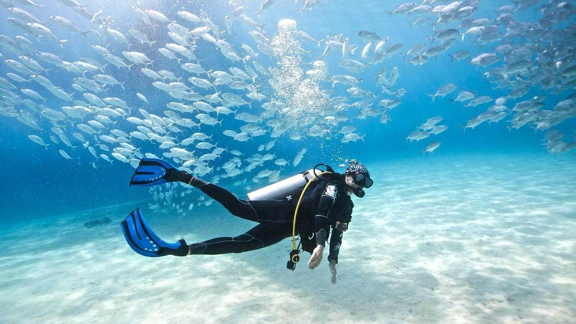 learn how to diving first lesson