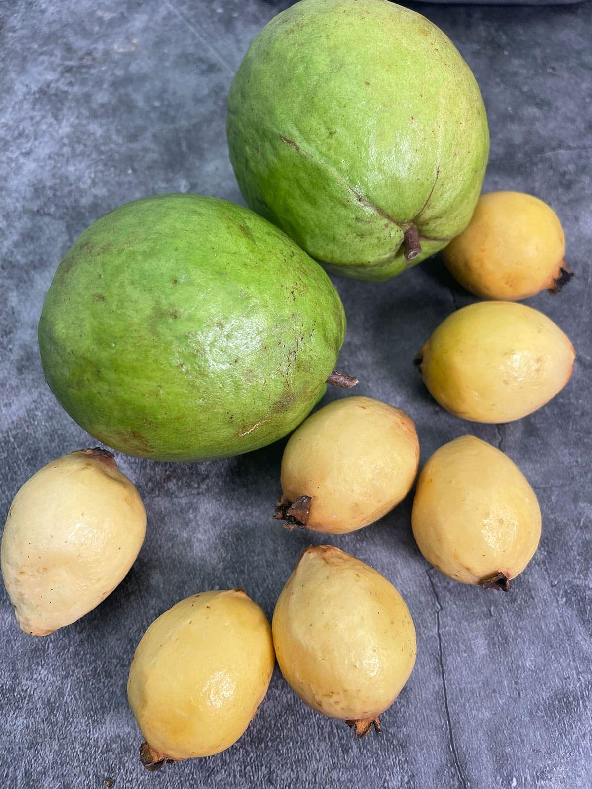 yellow guavas and white guavas on grey background