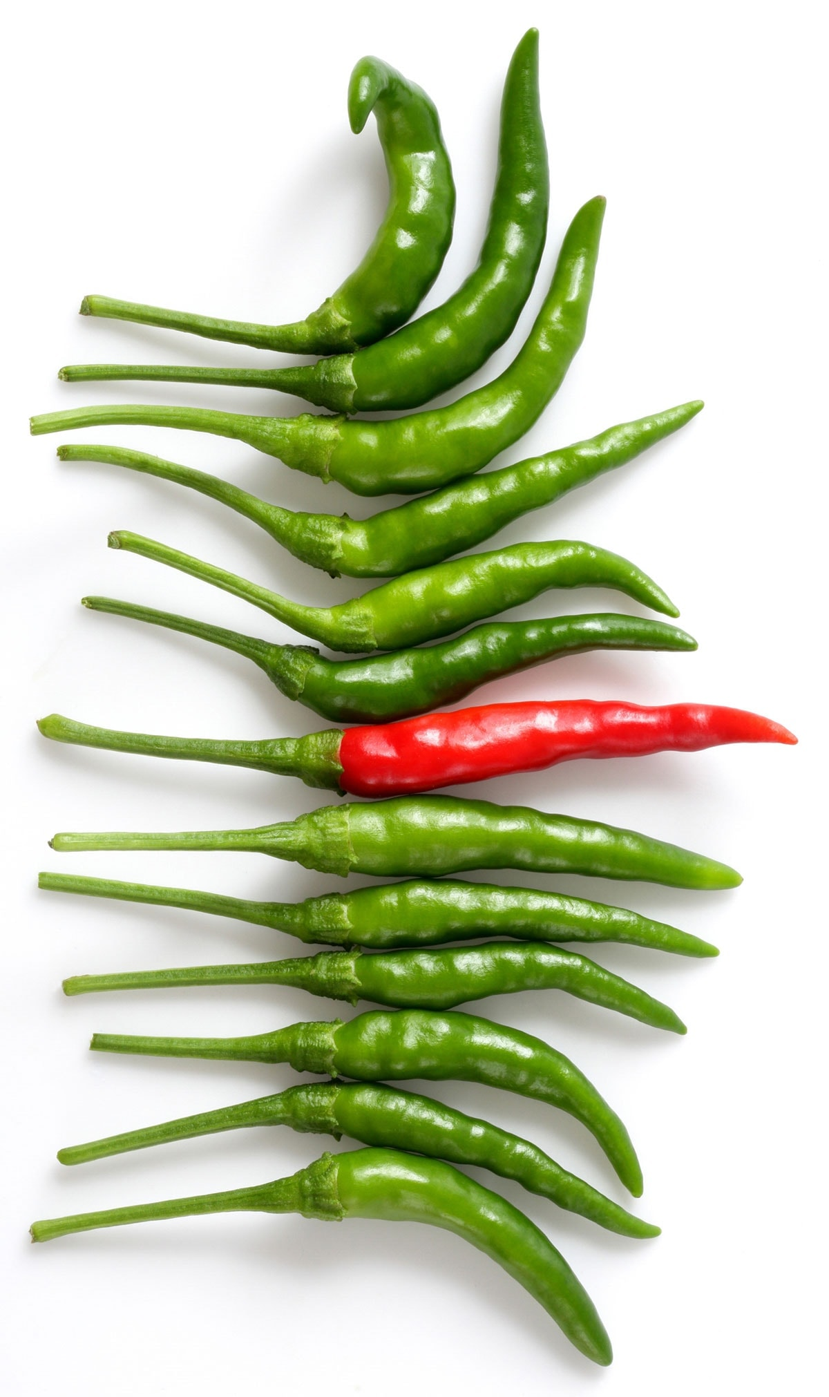 African chili peppers on a white background, green and red pepper