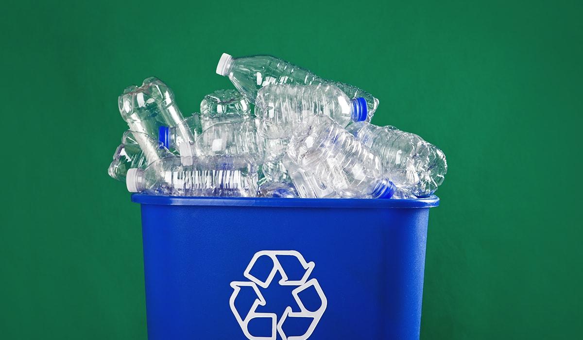 Stuffed Recycling Bin