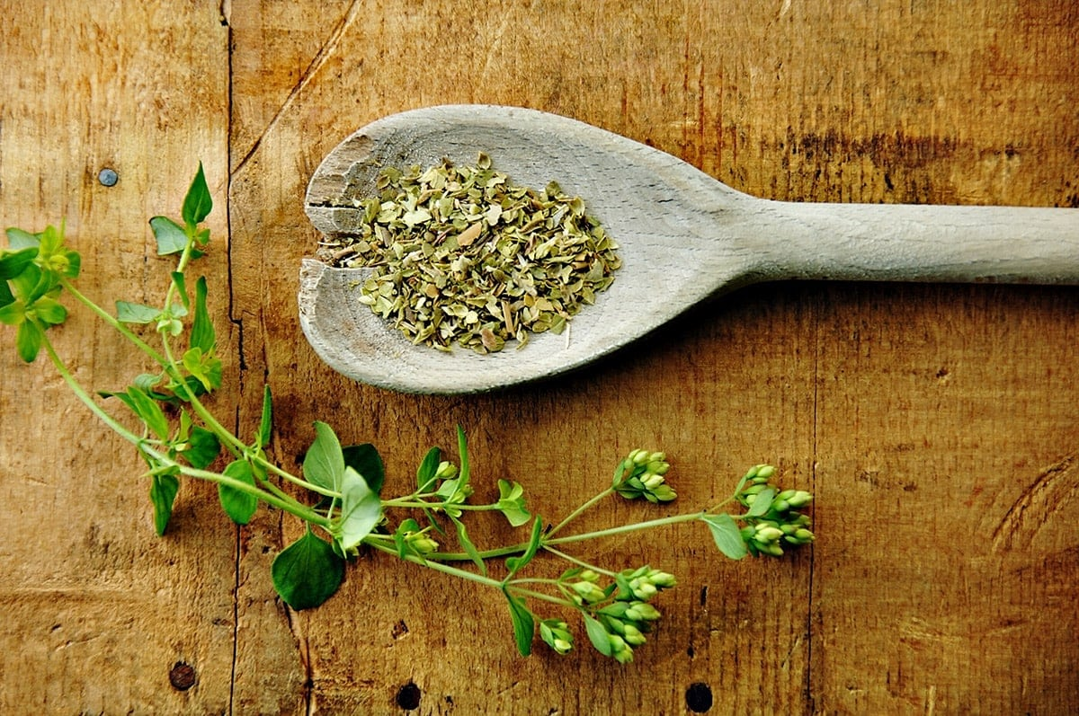 Fresh and dried oregano on a wooden background