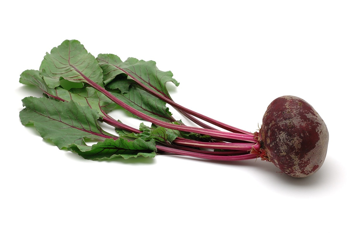 beet greens on white background