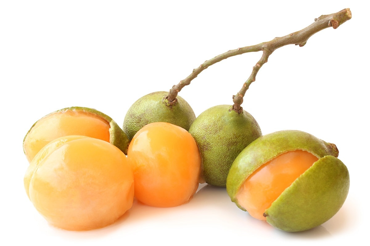 Genip fruits on a white background