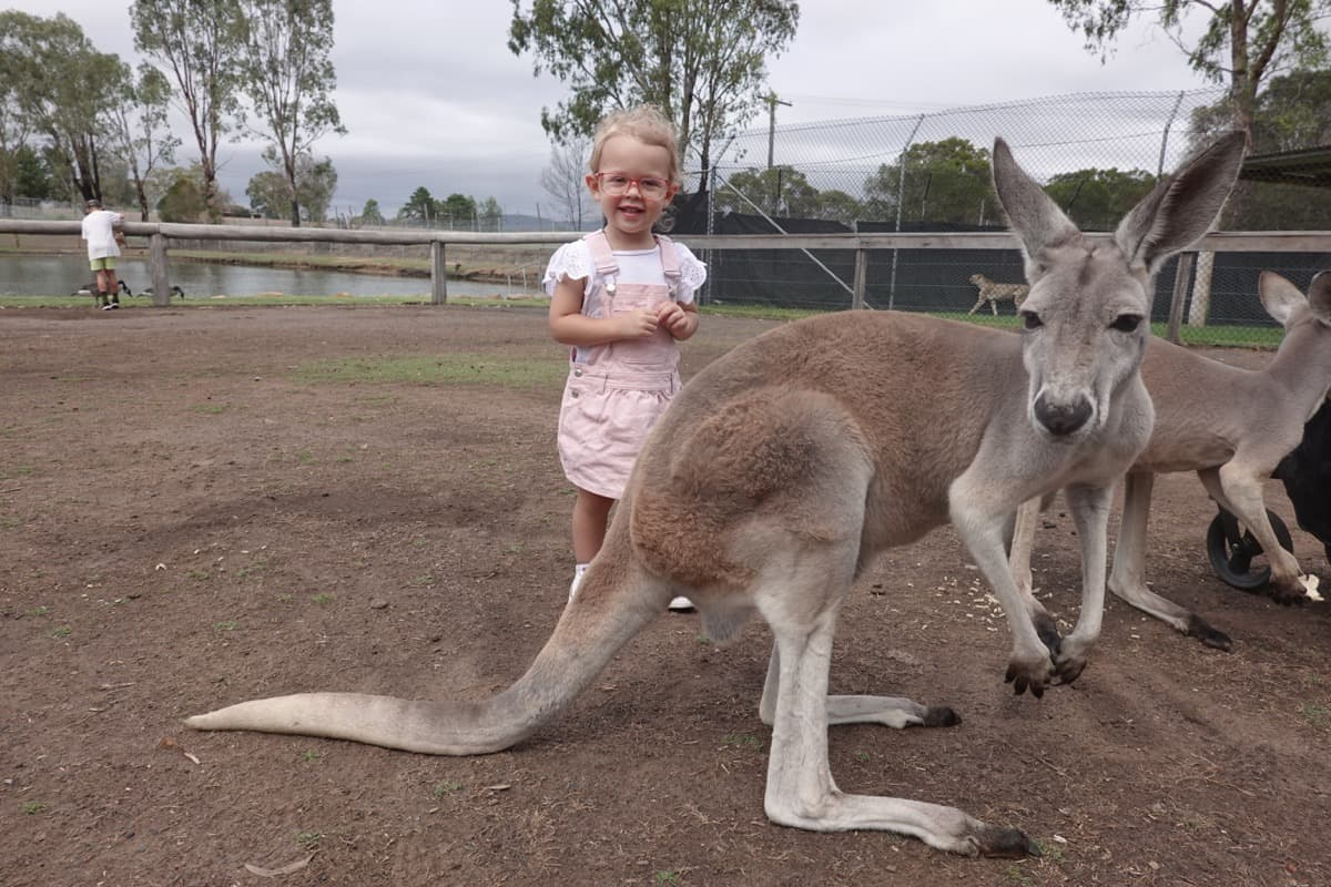 Hunter Valley Kids Things to Do