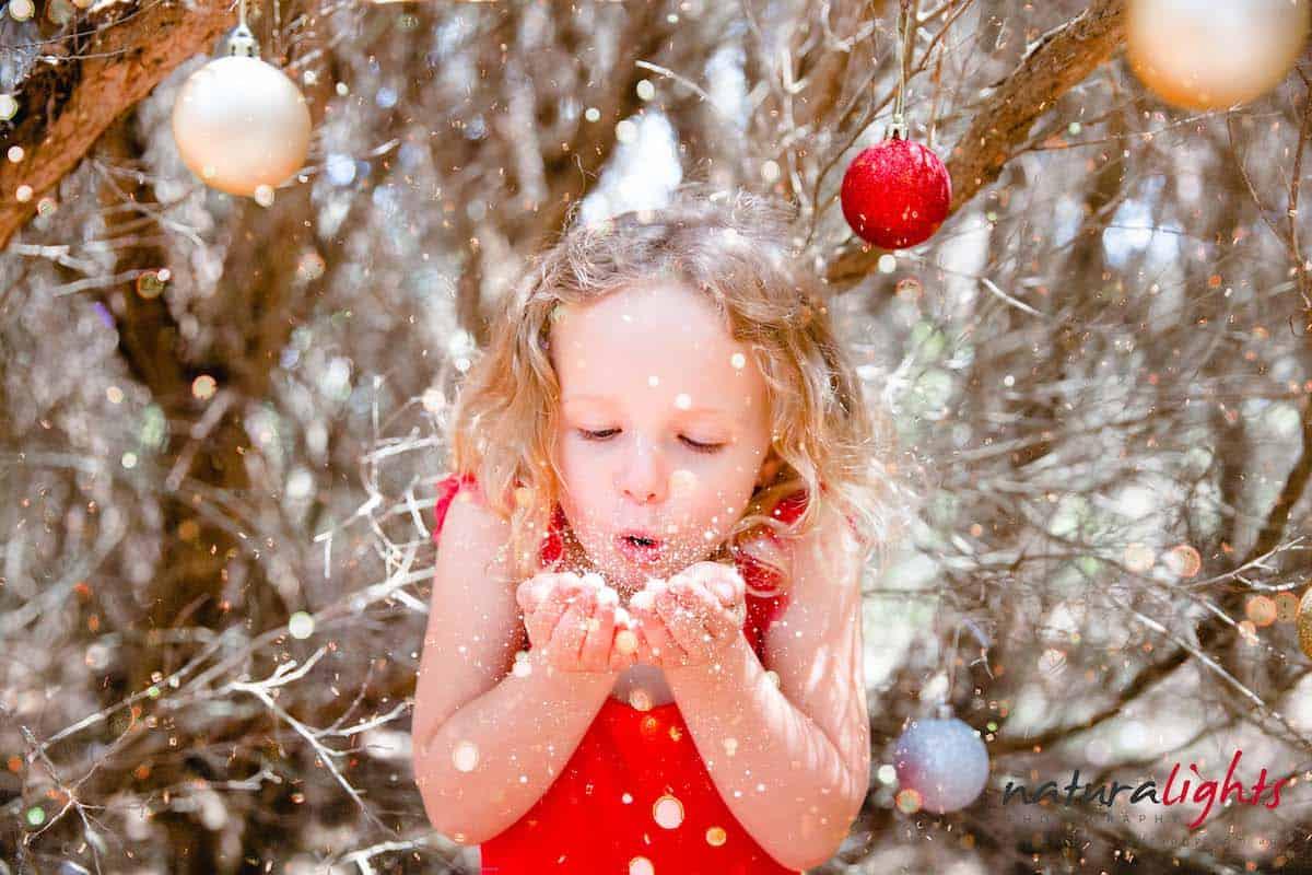 Winter wonderland photos