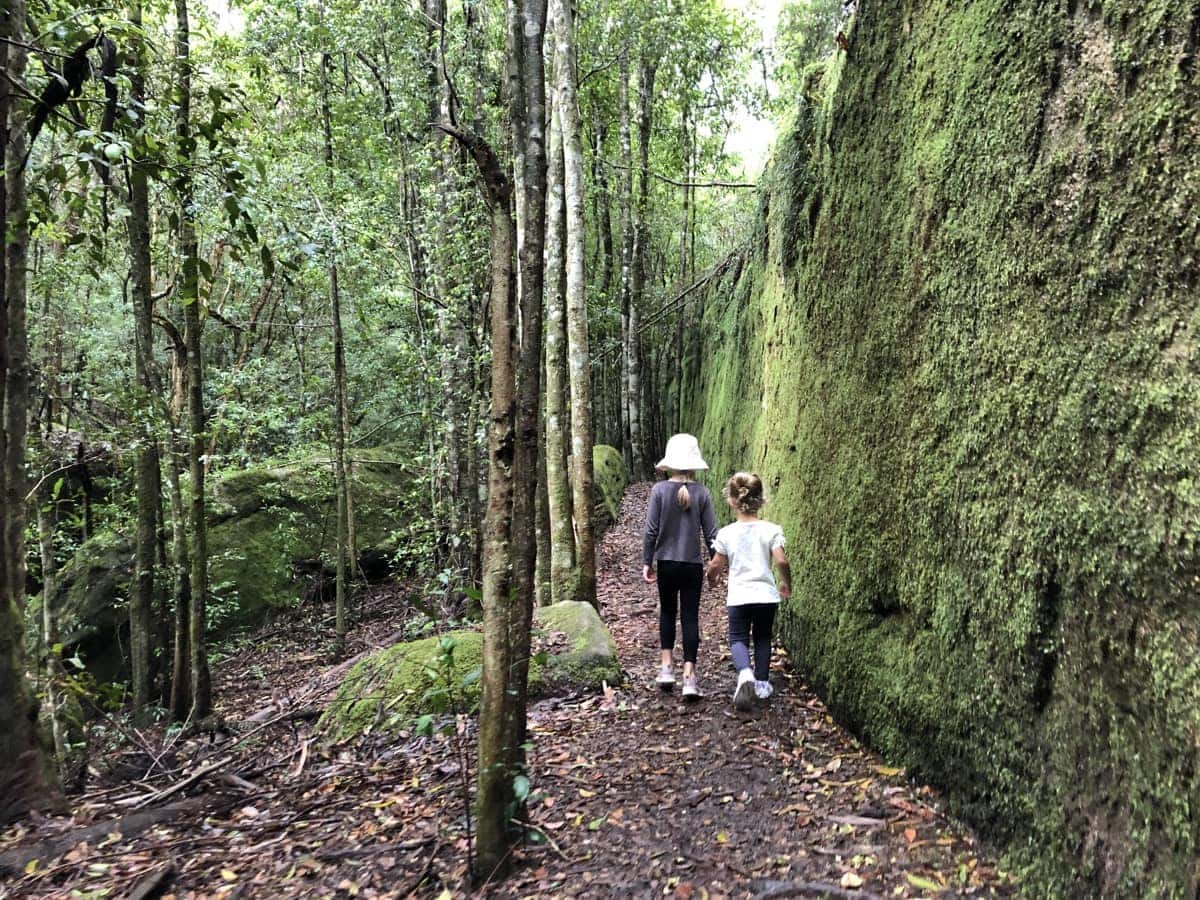 Boarding House Dam Moss Wall