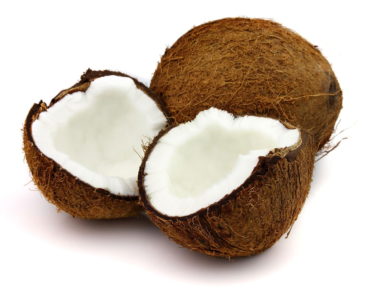dried coconut on white background