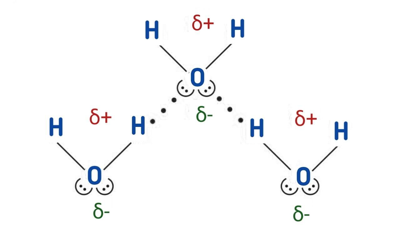 Hydrogen bonding in water