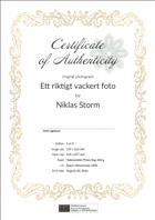 FOTOverket äkthetscertifikat mall 1