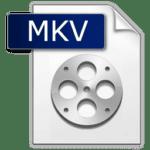Wat is een MKV?