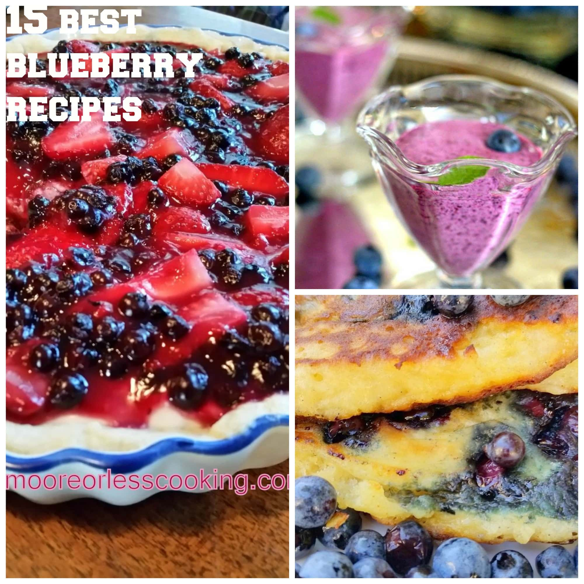 15 Very Best Ways to Welcome Blueberries!