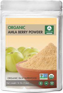 Naturevibe BotanicalsAmla Berry Powder